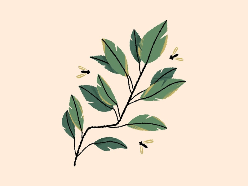 still growing!! tree branch leaves botanical nature plant illustration