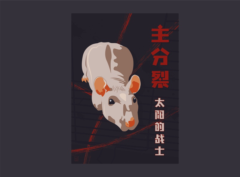 Master Splinter illustration design rat splinter illustration ninjaturturtles mastersplinter