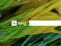 Better Bing