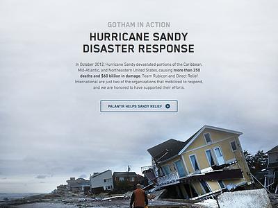 Palantir Gotham Case Study palantir gotham interface ui website layout case study fade