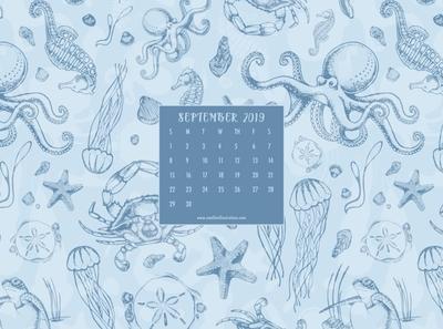 Low Country Sea Life Digital Wallpaper Design illustration illustrator pattern design surface design