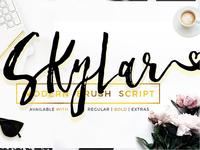 Skylar Font - Modern Dry Brush Script
