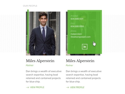 Profile style for law website