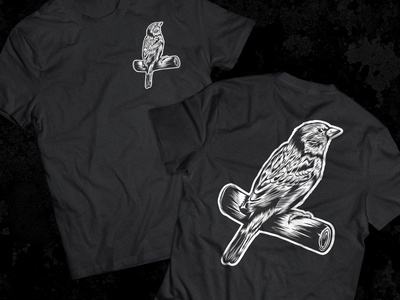 Sparrow on Tee Shirt