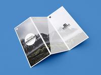 Free Modern Tri Fold Brochure Mockup