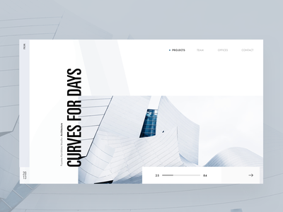 Project Hero editorial visual hierarchy design clean white minimal web design article architect architecture layout grid typography minimalist light ui website