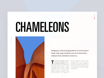 Chameleons Article editorial visual hierarchy design clean white minimal web design article architect architecture layout grid typography minimalist light ui website