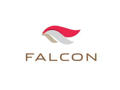 Falcon Holding Company by Mohamed Ezzat on Dribbble