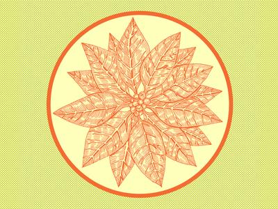 Poinsettia 120118 V2