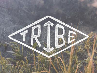 Tribe T-Shirt Design branding handlettering t-shirt