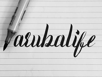 Aruba Life Logo Design branding lettering typography copic brushcalligraphy calligraphy handlettering logo design
