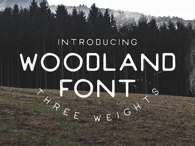 Woodland Font vintage design typeface rustic lettering font