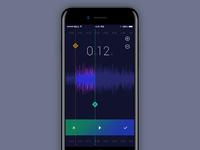 Audio Editor - iOS