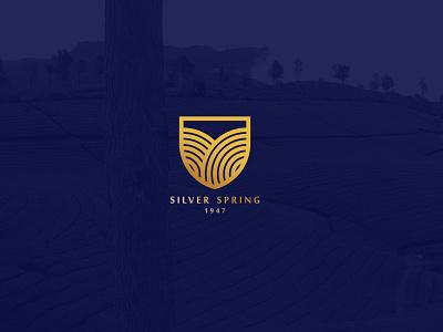 Silver Spring  Branding chennai lettering logodesign logo identity identity design brand identity branding