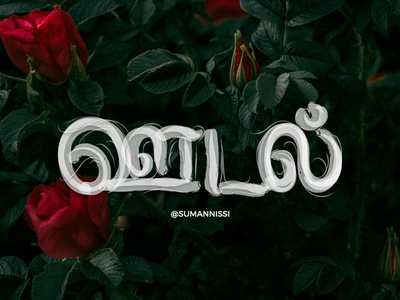 ஊடுதல் காமத்திற்கு இன்பம் அதற்கின்பம் கூடி முயங்கப் பெறின். tamil lettering letter illustration typography tamiltypography caligraphy