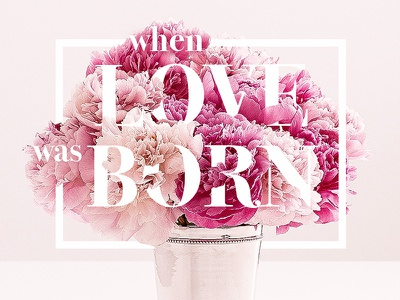 When Love was Born flowers love typography type floraltypography floraltype christmas