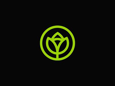 A Flower illustration vintage typography brand and identity identity logotype plant plant logo nature logo flower logo flower branding symbol