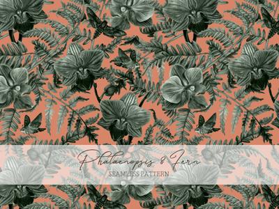 Phalaenopsis and Fern botanical illustration botanical art botany interior plants creative market watercolor painting drawing traditional art illustration art
