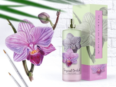 Watercolor Tropical Orchid traditional art plants illustration wedding botany painting watercolor packaging