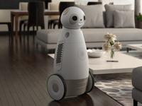 Sipro Intelligent Social Robot