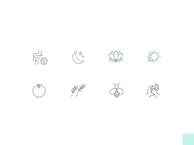 Nutritionist icon set vector clean branding app illustration uxui outline icons outline icon outline nature icons clean ui icon set