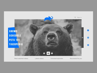 Animal Planet - Landing page UI
