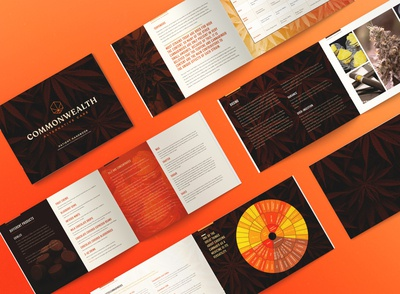 CAC Patient Handbook Design