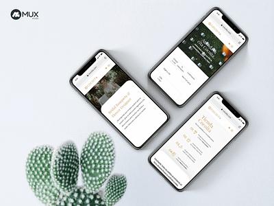 Florist eCommerce for Cocoita minimalist design uxdesign uidesign minimal webdesign