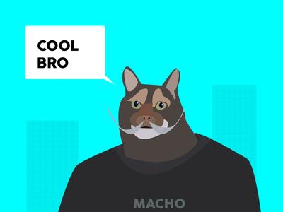 Macho cat