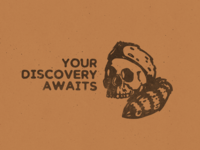 Discovery Awaits