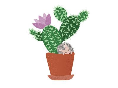 Cactus flowerpot flower hedgehog animal plant cactus