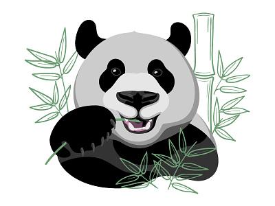 Panda bamboo panda animal illustrator adobe illustration vector