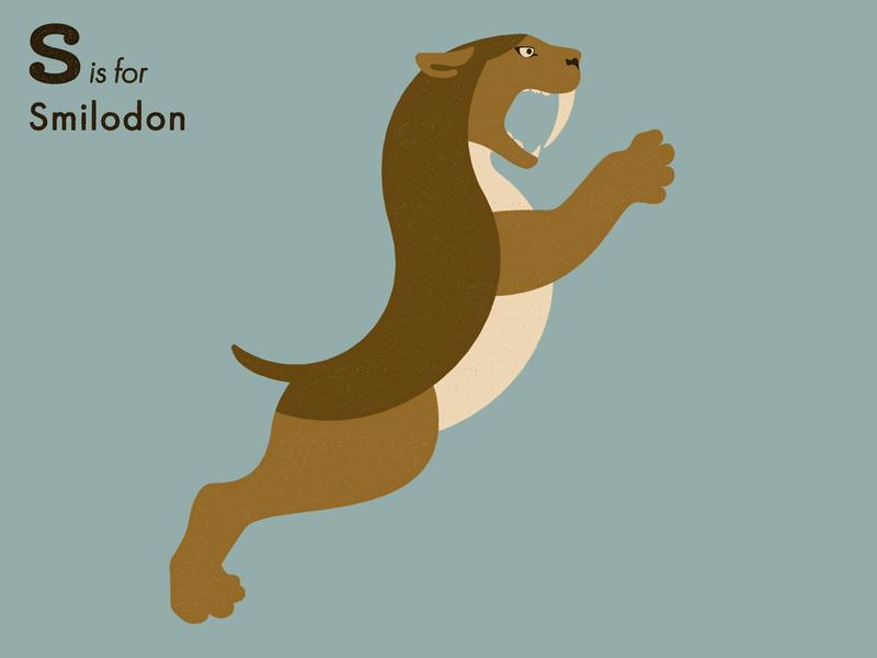 S is for Smilodon wild cat alphabet letter extinct animal illustrator adobe illustration vector