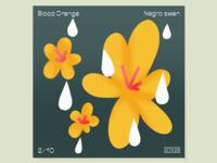 02 – Negro Swan