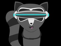 Raccoon VR Goggles