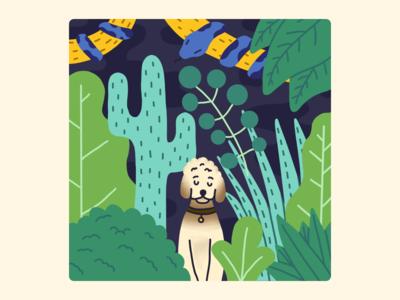 In the jungle 🐩