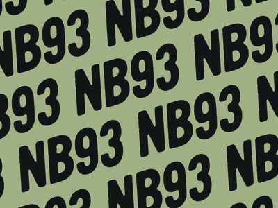 NB93 patch outdoors adventure typography design logodesign logo design logo illustration branding