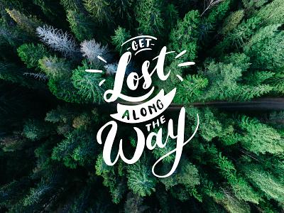 Forest Adventure Branding🌲 icon website app web minimal creation lettering logodesign illustration vector branding design typography logo
