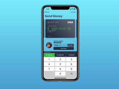 Send Money Quick UI Sketch design app ux south africa ui
