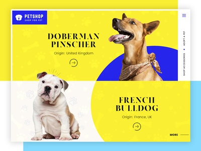 Pet Shop - Adopt Dog