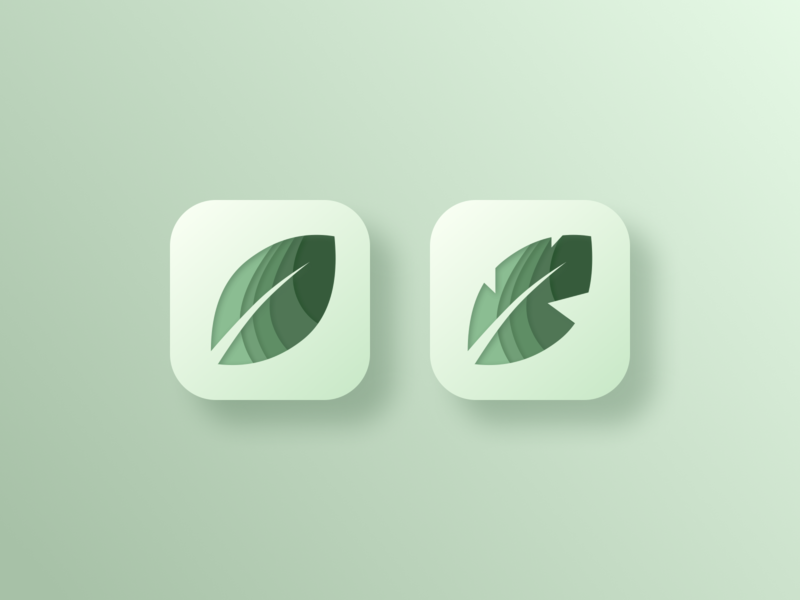 Daily UI 005: App Icon jungle layered minimalism clean calming mobile app leaf motif banana leaf leaf icon branding vector logo app icon ui design 005 daily ui 005 daily ui challenge daily ui