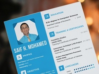 Professional CV and promotion