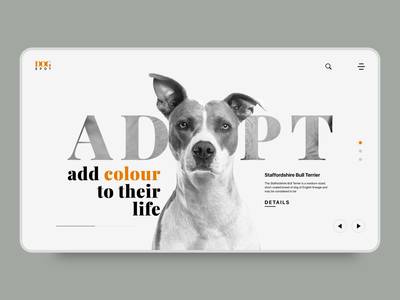Adopt a Pet minimalist landingpage web adopt dog pets pet design xd ui rapidgems studio rapidgems adobexd adobe designer minimal uiux interaction design