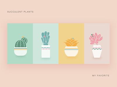 Succulent plants card icon ui illustration succulent plants
