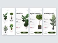 Rental plants