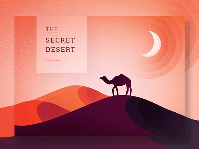 The Secret Desert purple orange moon camel sand web flat ui sahara desert illustration