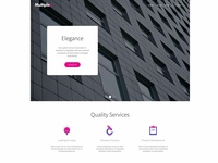 Multiplex Corporate Theme