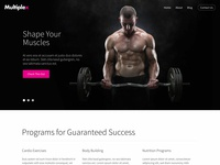 Multiplex Fitness Theme