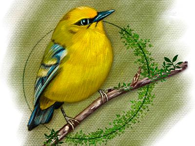Free drawing bird green procreate drawing character 2d illustration yellow art bird