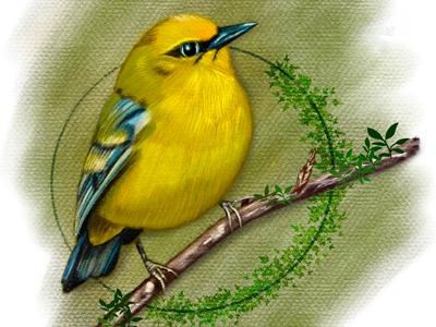 Free drawing bird